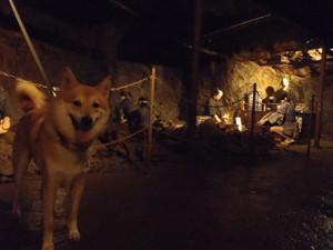 生野銀山へ_e0371017_11500717.jpg