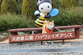 淡路島へ_e0371017_11583687.jpg