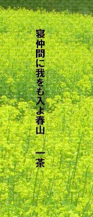 f0117041_16170464.jpg