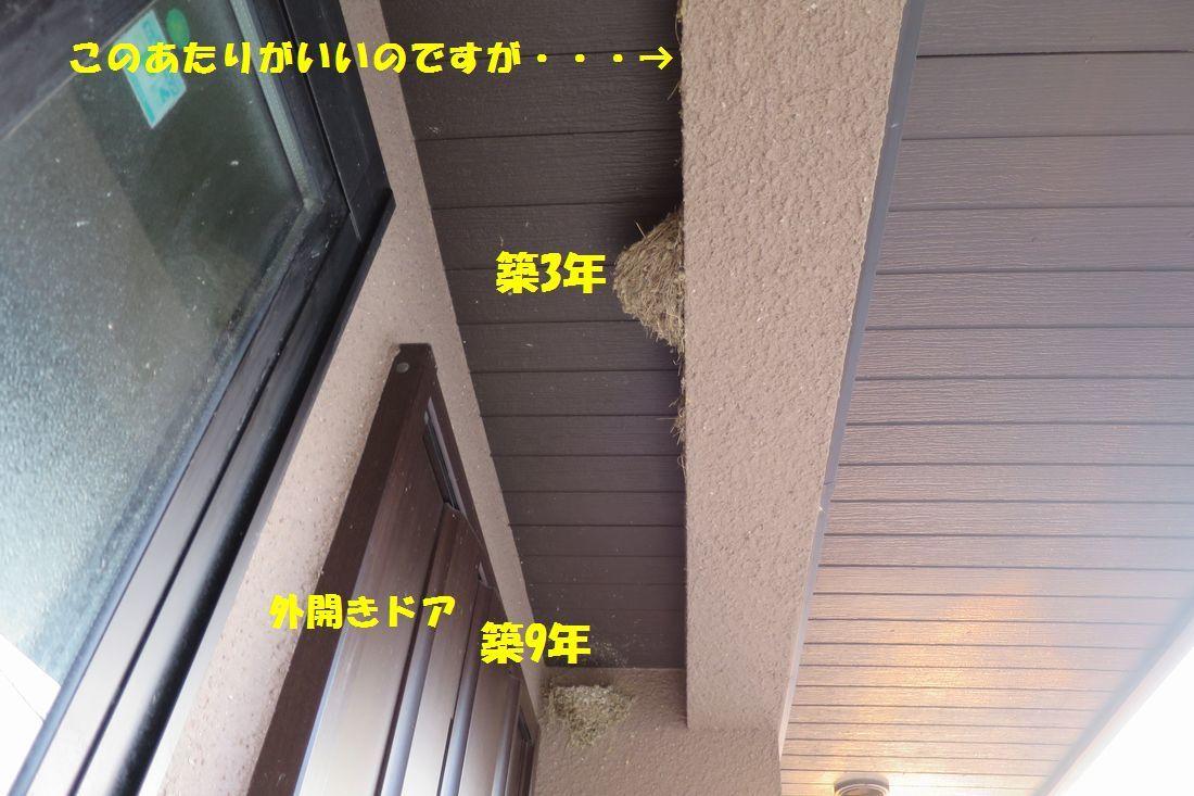 b0358046_22263122.jpg