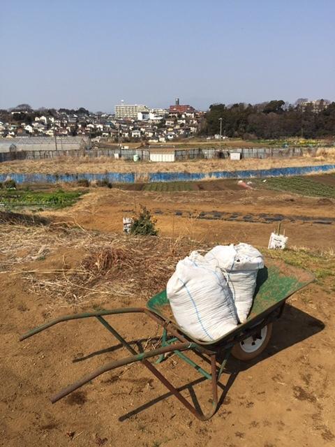 今日から1年半寝かした堆肥を畑に運び込みます 総勢5人_c0222448_15105466.jpg