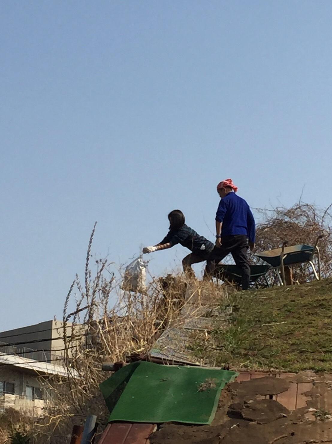 今日から1年半寝かした堆肥を畑に運び込みます 総勢5人_c0222448_15114596.jpg