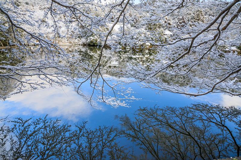 龍安寺・桜苑と鏡容池の雪景色(後編)_f0155048_239282.jpg