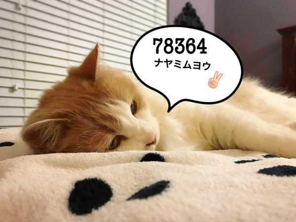 f0304452_20265846.jpg