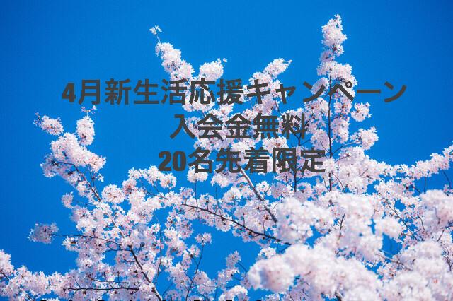 a0134296_01175996.jpg