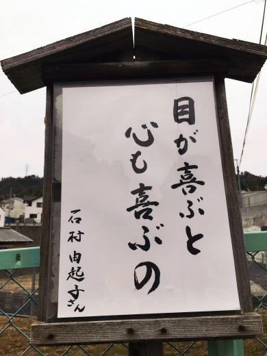 いつもの散歩道!お寺からの新しいメッセージ(^^)/_a0213806_20122398.jpg