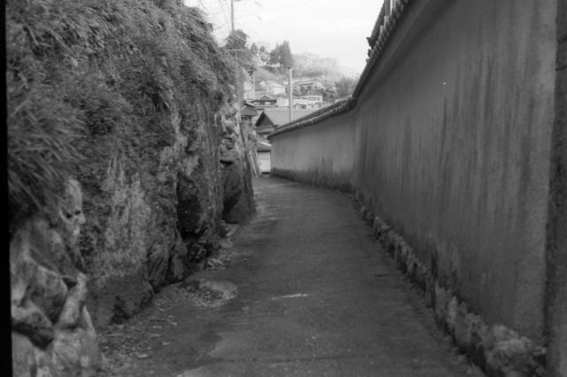 いささかの遅延を忍べばまだ〃悠々として闊歩すべき道はいくらもある。と仰ってます。_d0138130_09482590.jpg