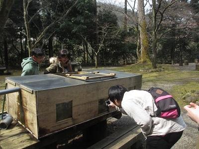 鰍(かじか)と観光客_f0289632_8531991.jpg