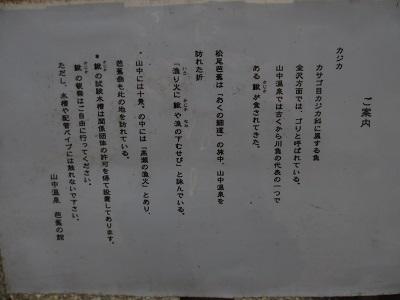 鰍(かじか)と観光客_f0289632_8553795.jpg