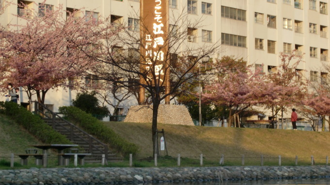 旧中川は春うらら_c0249569_16135802.jpg