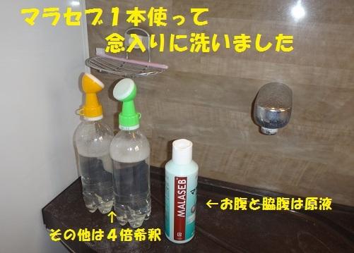 f0121712_16263681.jpg