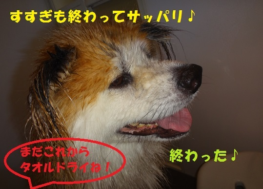 f0121712_16493055.jpg