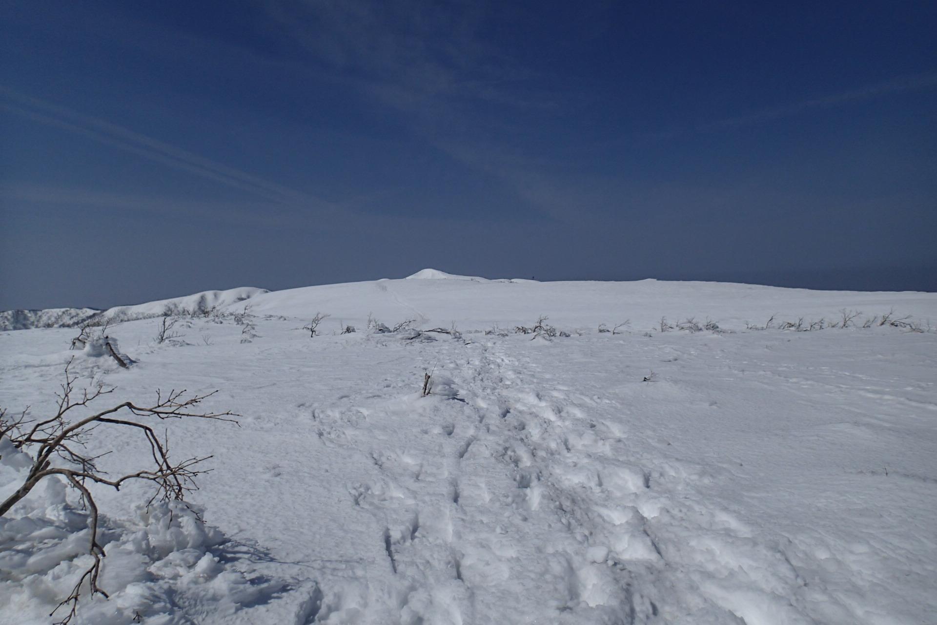 銀杏峰から部子山_e0360016_19422761.jpg