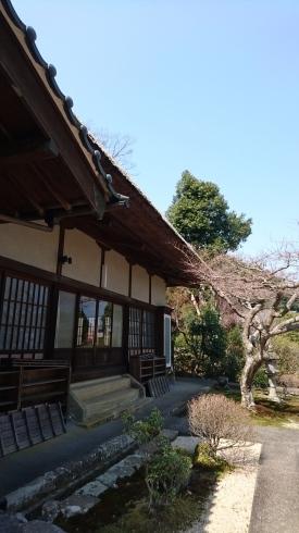 不思議なお寺でオタカラ_c0131829_07423602.jpg