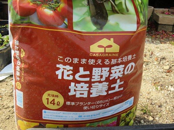 2017年3月22日 サニーレタスの種を蒔きました !_b0341140_1324630.jpg