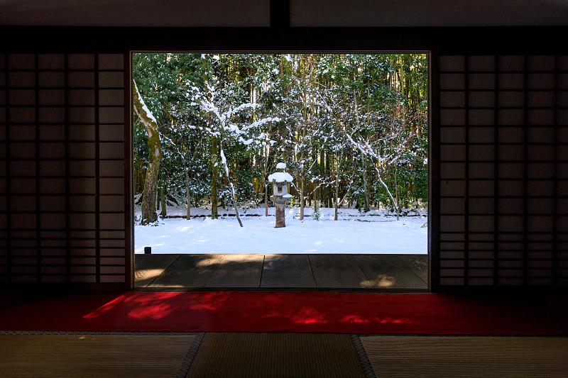 高桐院・雪景色_f0155048_22103356.jpg