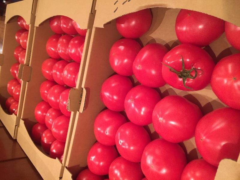 トマトが美味しくなってきたー!完熟させます。&3月22日(水)のランチメニュー_d0243849_23155670.jpg