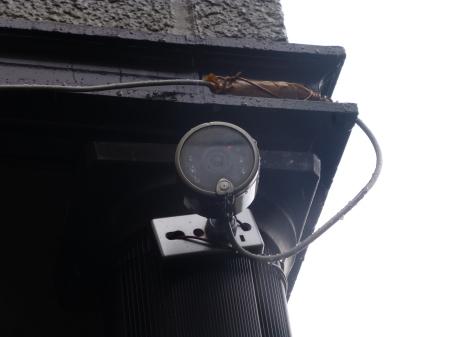 野鳥シリーズ  監視カメラの効用『バードウォチング』_b0011584_14421572.jpg