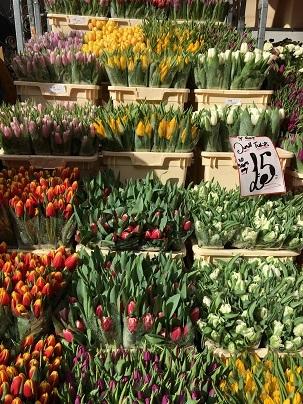 春のお花を探しにColumbia Road flower marketへ_f0238789_20093847.jpg