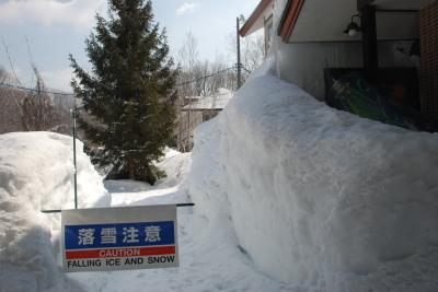 3月22日 水曜     4℃_f0210811_11092642.jpg