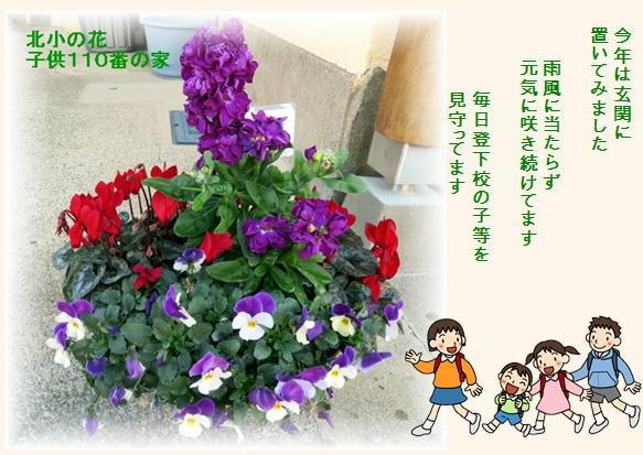 f0003174_13541159.jpg