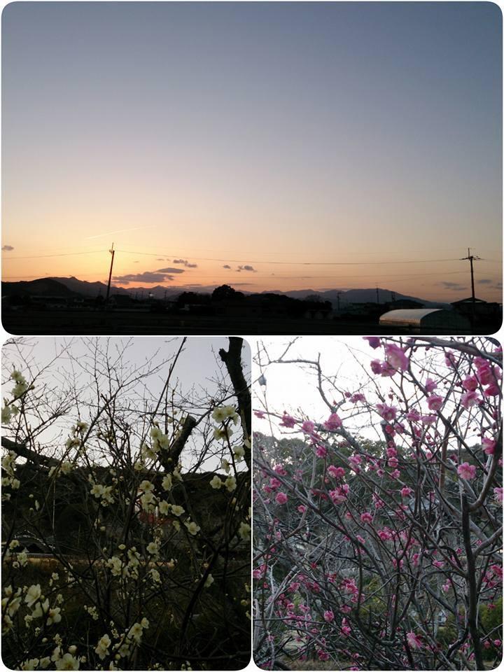 お遍路さん②と③_e0236480_09564364.jpg