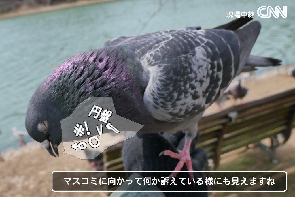 b0174191_20054893.jpg