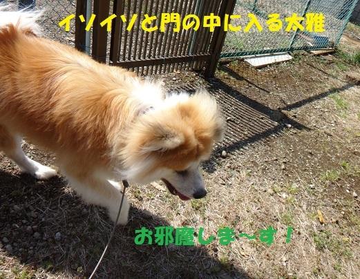 f0121712_14562307.jpg