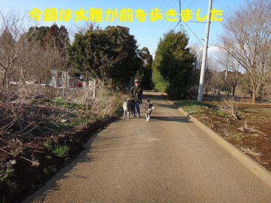 f0121712_15195629.jpg