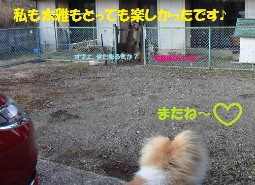 f0121712_15433741.jpg