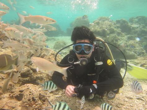 3月23日海Friendダイビングに、親子ダイビング_c0070933_22512602.jpg