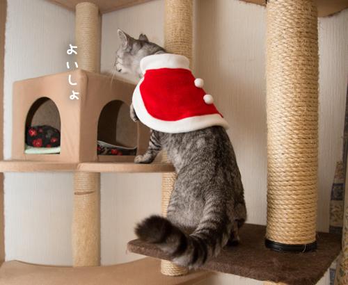 クリスマス撮影秘話☆その3_d0355333_11350833.jpg