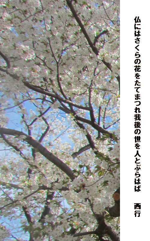 f0117041_20475039.jpg