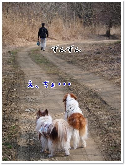 d0013149_00124643.jpg