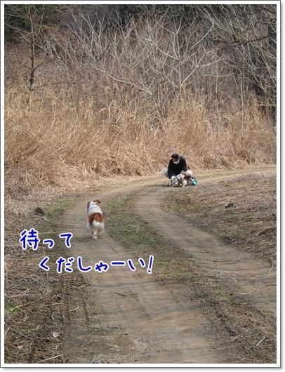 d0013149_00130687.jpg