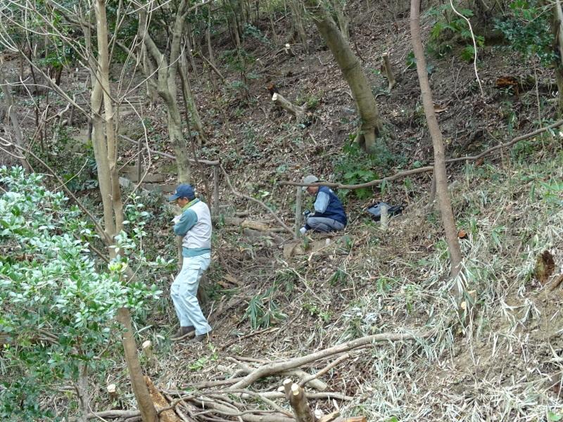 うみべの森を育てる会:3月度運営委員会_c0108460_20295137.jpg