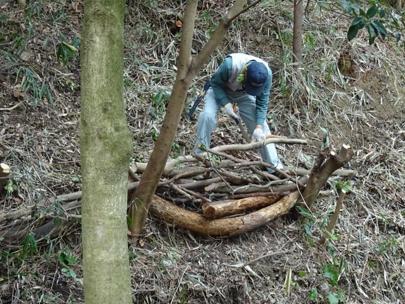 うみべの森を育てる会:3月度運営委員会_c0108460_20302927.jpg