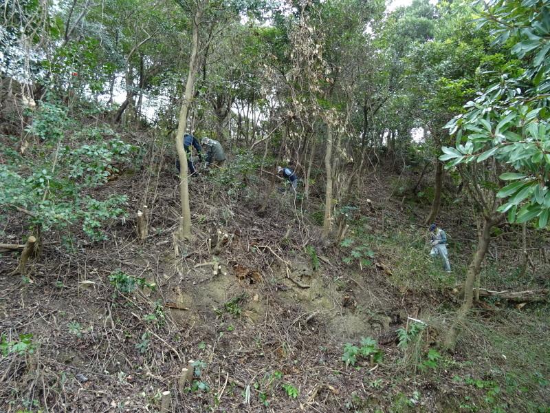 うみべの森を育てる会:3月度運営委員会_c0108460_20310389.jpg