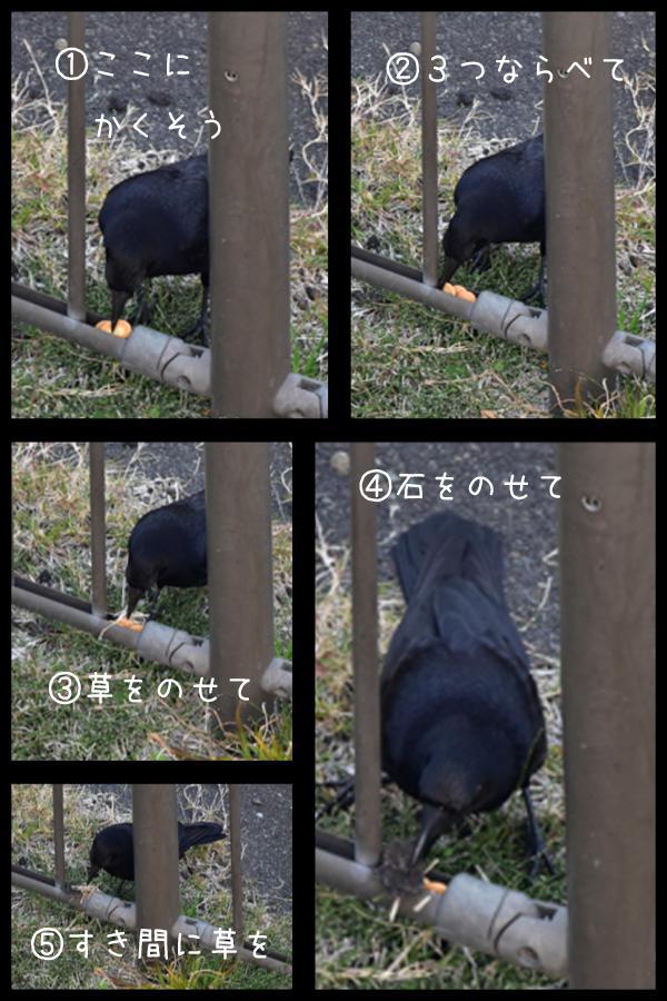 賢いかしこい♪ (^o^)_c0049299_22175312.jpg
