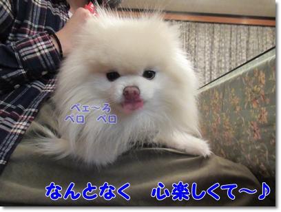 b0167519_2219590.jpg