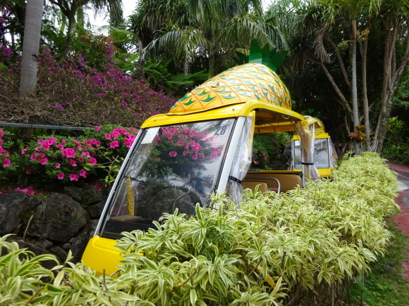 沖縄旅行③_b0163121_22594579.jpg