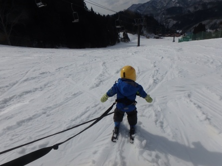 祝!! さんぽ、スキーデビュー!!_f0101226_00153479.jpg