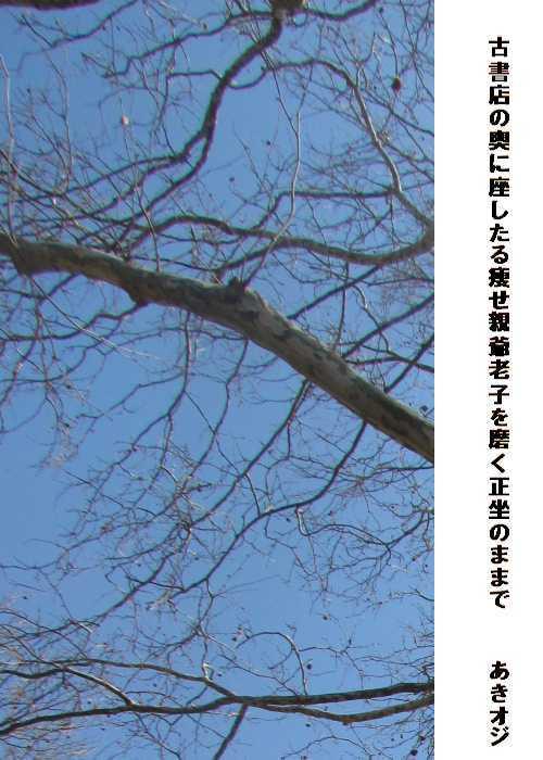 f0117041_17273258.jpg