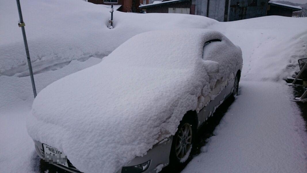 なごり雪?_f0081443_2227344.jpg