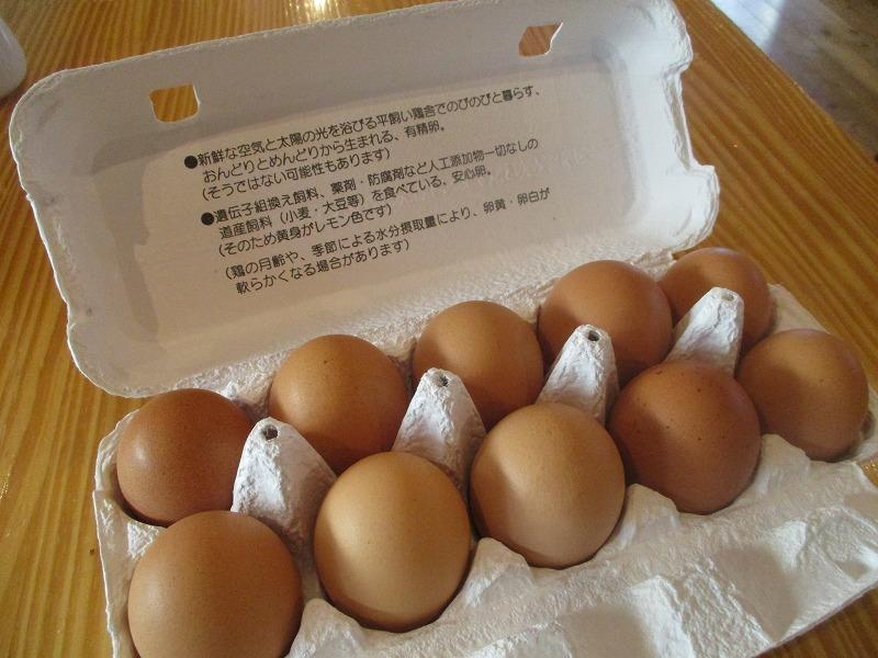 3月25日(土)・・・たつかーむの卵_f0202703_2257084.jpg