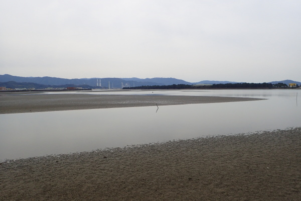 平井 研さん 和歌山環境学習 くらべてみよう、尼崎と和歌山の海 _c0367107_13173224.jpg