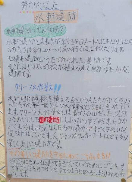 水軒堤防 雑賀小学校生徒_c0367107_13324453.jpg