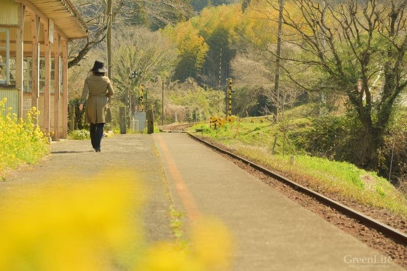 春の小湊鉄道遠足♪_f0321522_18162585.jpg