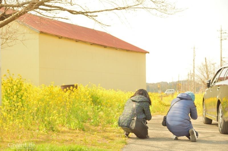 春の小湊鉄道遠足♪_f0321522_18174244.jpg