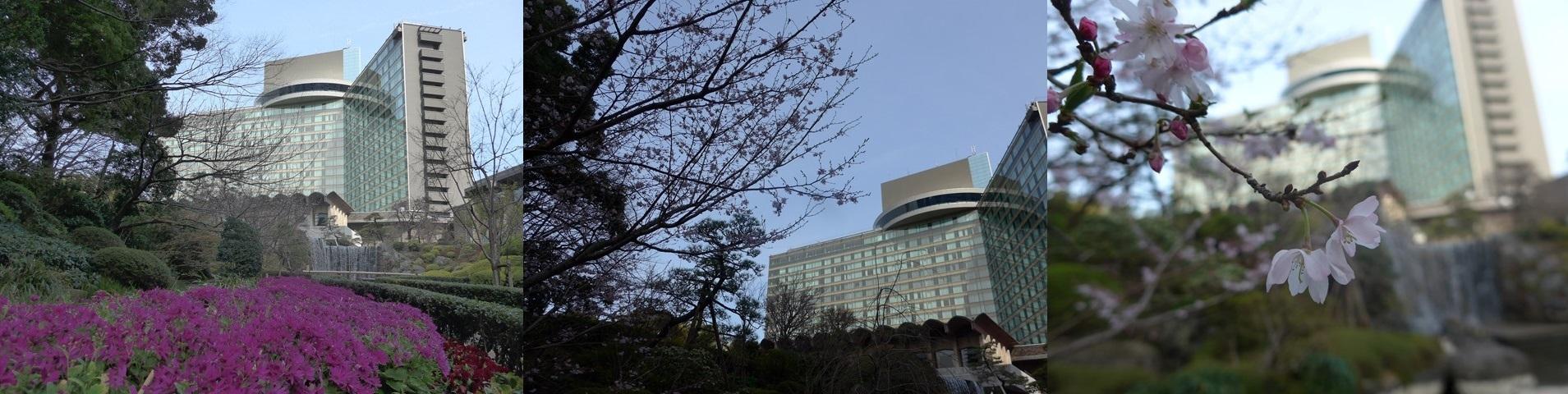 長氏の戦い続ける40年、全日病総会、そして「生活」安心のために_b0115629_19375480.jpg